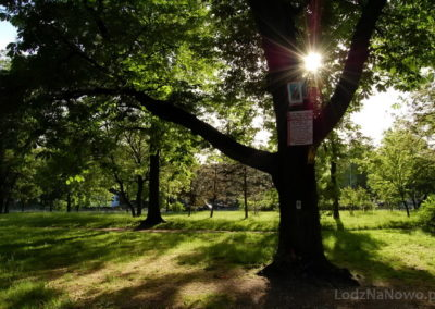 park_S__owackiego
